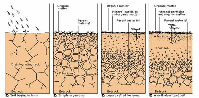 How soil is formed